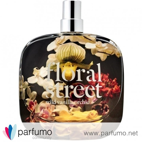 Wild Vanilla Orchid by Floral Street